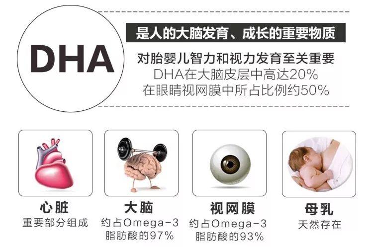 为什么说藻油DHA比鱼油DHA更适合宝宝?