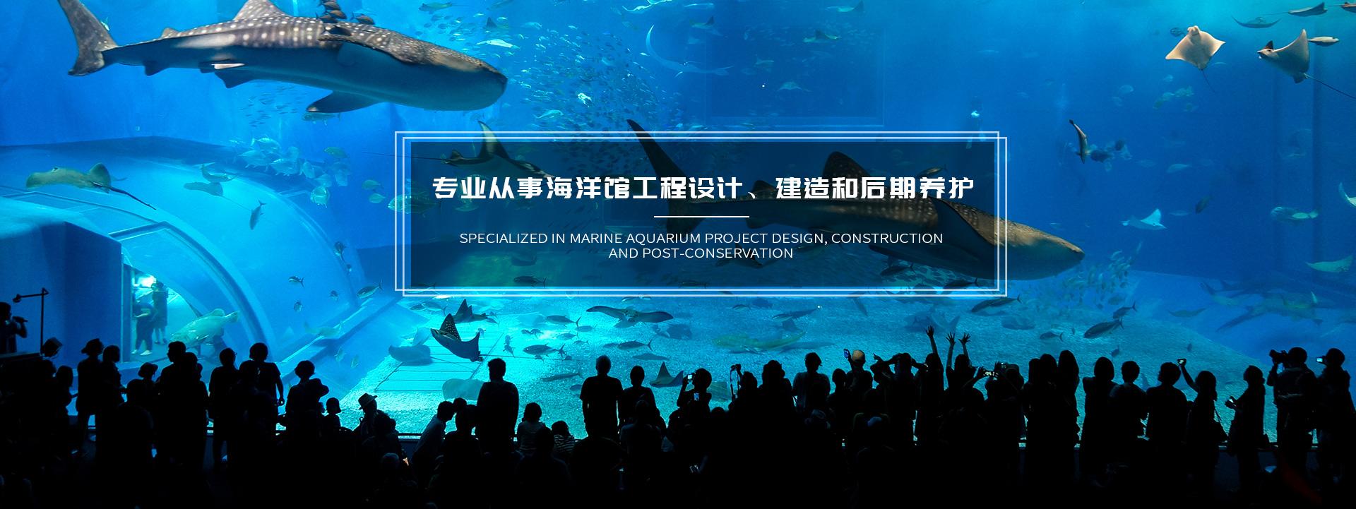 上海海洋水族馆设计