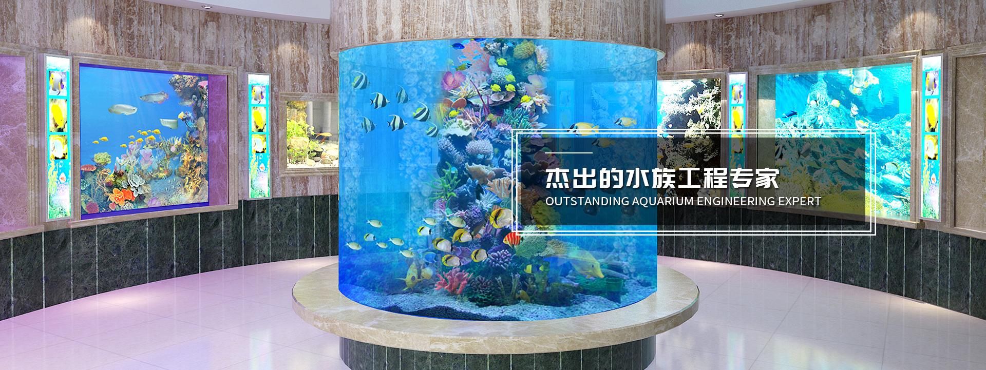 上海亚克力鱼缸定制/养护