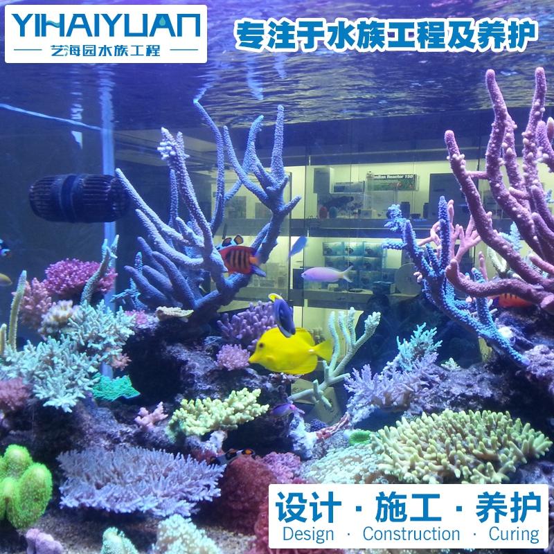 珊瑚鱼缸定制
