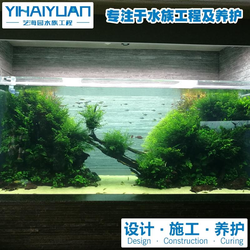 水草鱼缸定制