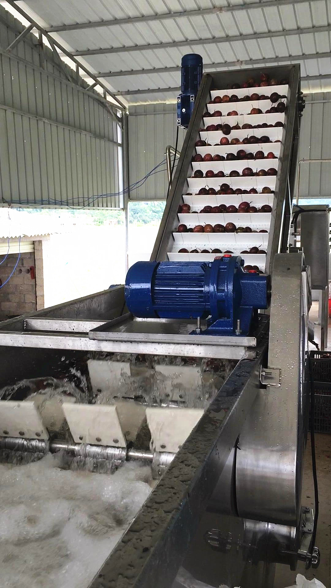 百香果飲料生產線