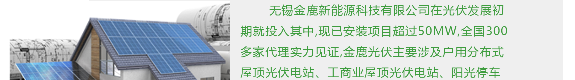 金鹿新能源公司简介