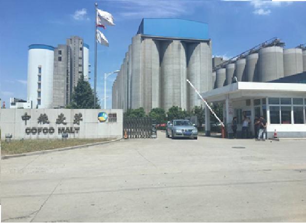3D物位扫描仪用于粮食豆粕仓