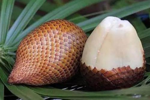 蛇皮果的营养价值有哪些