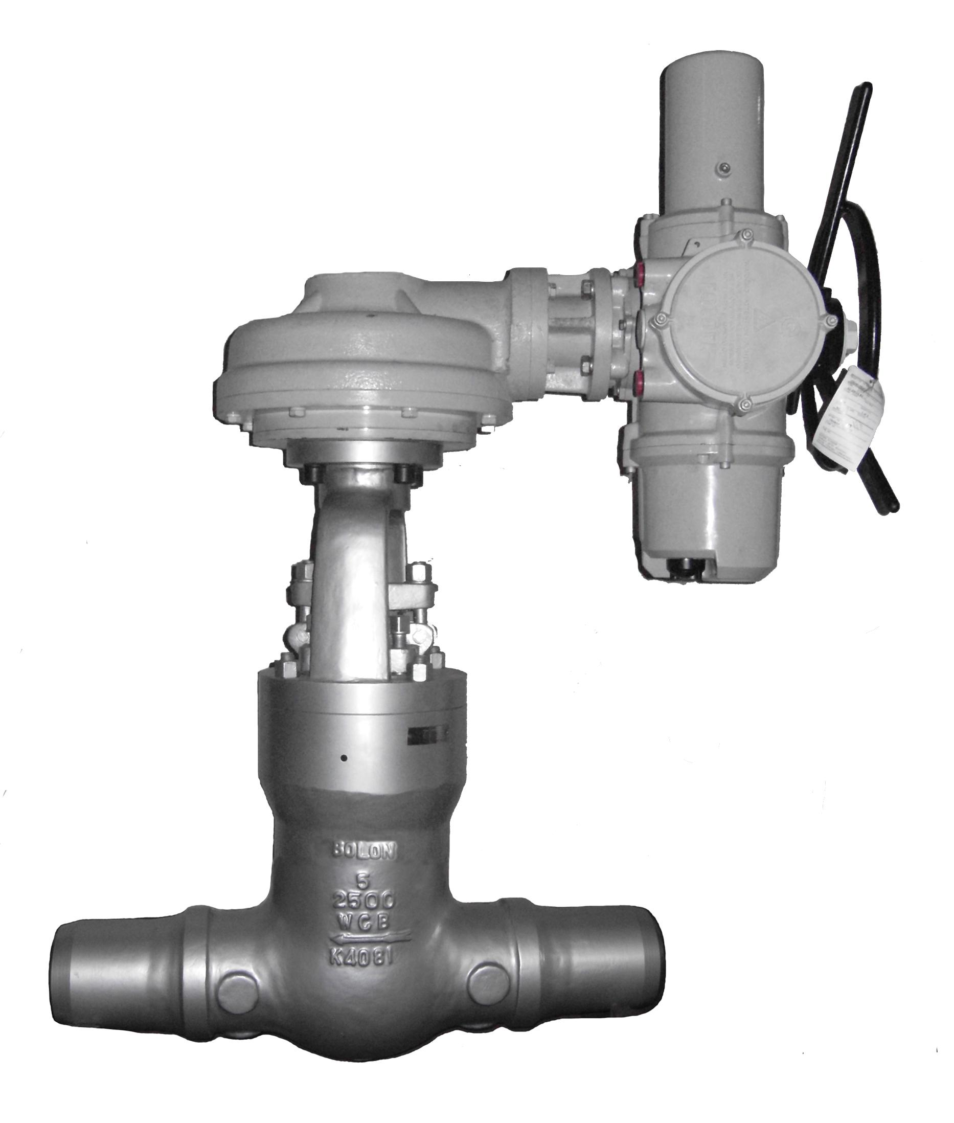 Z960Y-P54 100V 140V 170V高温高压电站闸阀