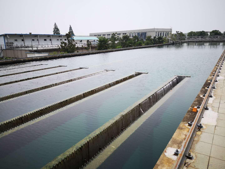 水净化处理系统