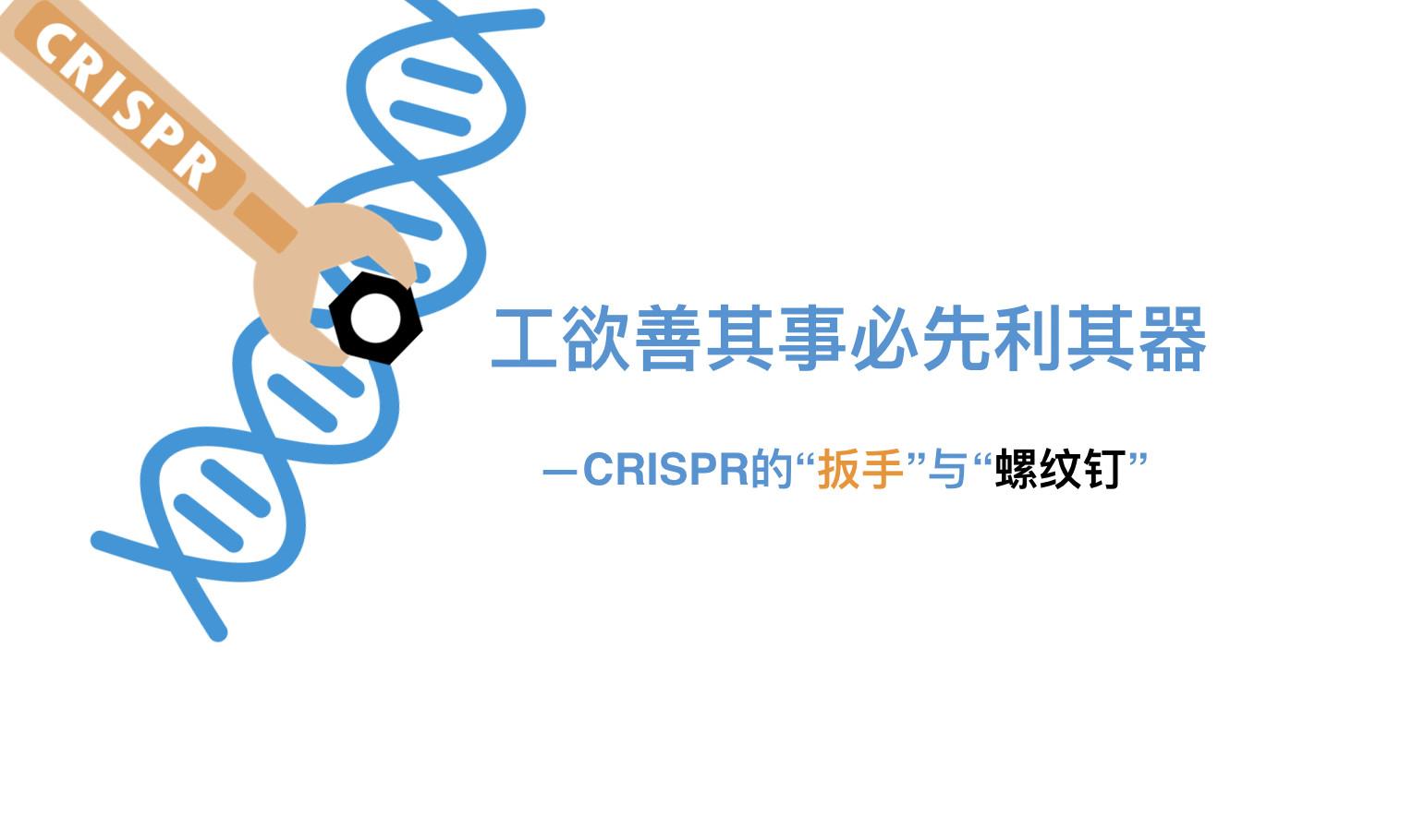 """工欲善其事必先利其器—CRISPR的""""扳手""""与""""螺纹钉"""""""