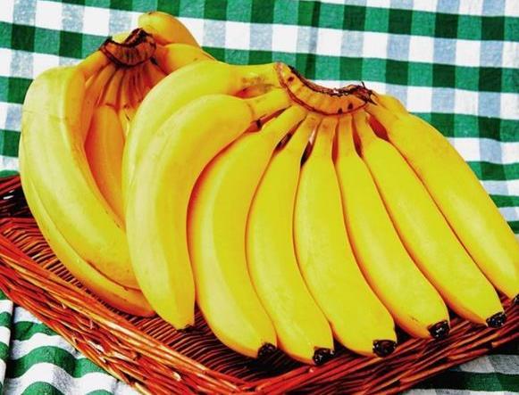 如何让香蕉冷库节能40%又安全-欧莱特智能机