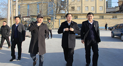 淄川区委书记李新胜参观