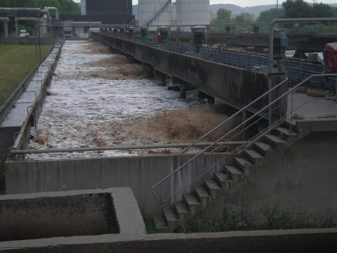 诺维信生物增效剂BioRemove5600帮助制浆造纸厂出水COD达标