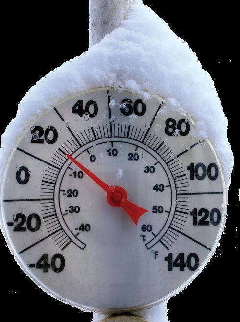 低温COD去除菌TolerX 5100保证食品污水处理厂冬季出水 COD 和TSS去除效率