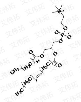 1-棕榈酰基-2-油酰基卵磷脂 POPC|26853-31-6