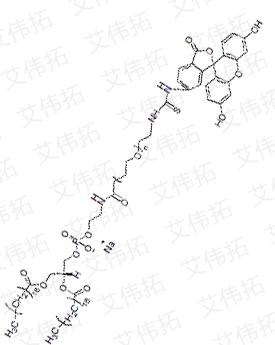 DSPE-PEG2000-FITC Distearoyl phosphatidyl acetamide-polyethylene glycol 2000-fluorescein
