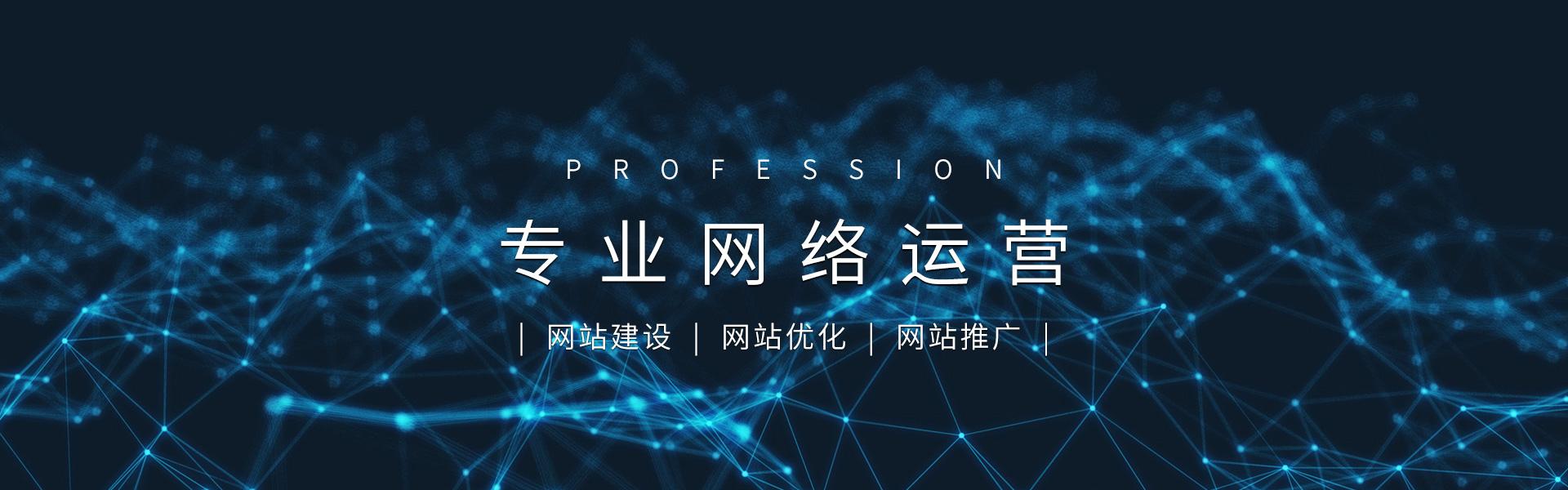 淄博网络优化