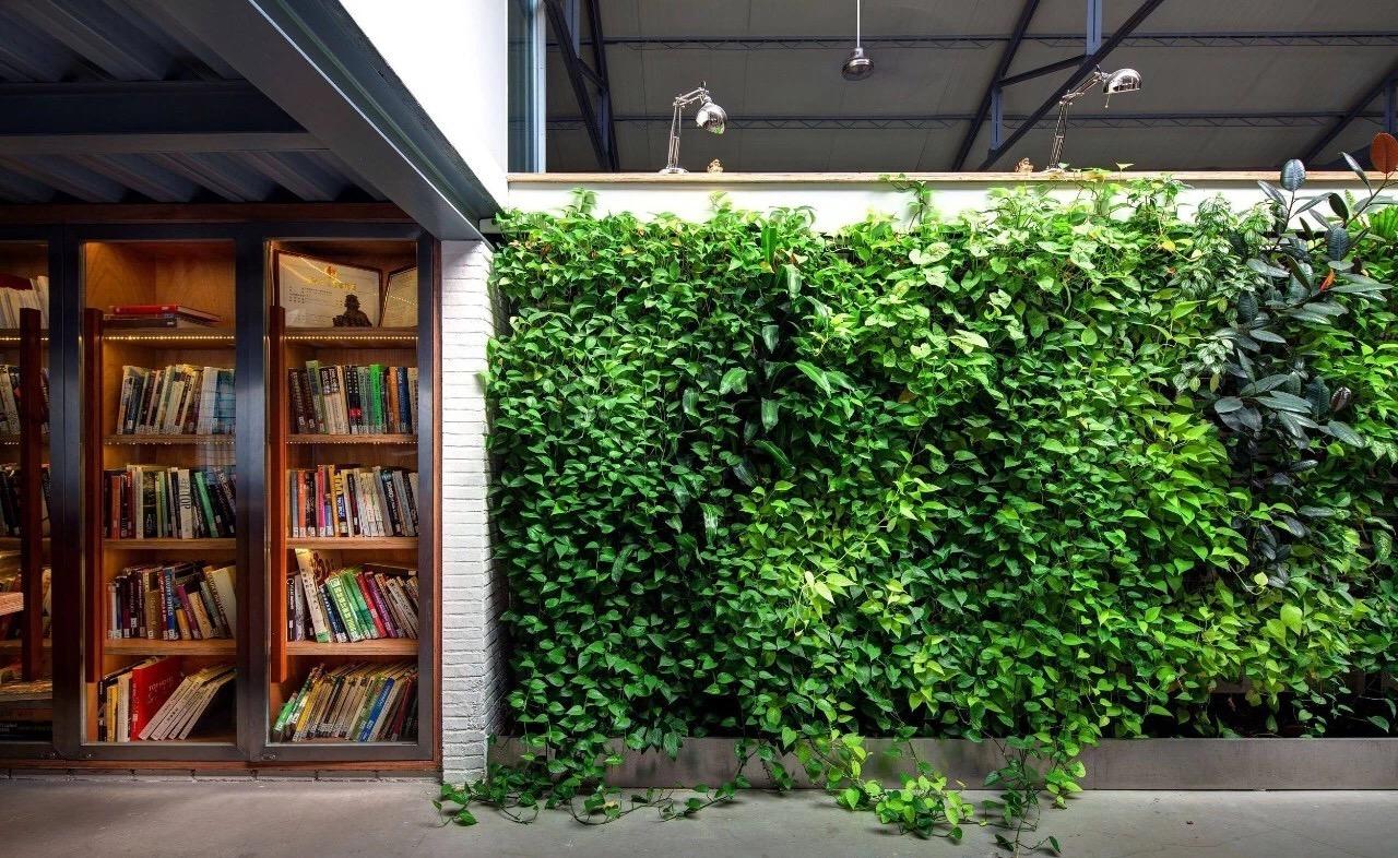 绿色植物墙来袭,爱圃岩棉教您如何打造混凝土墙面上的花园