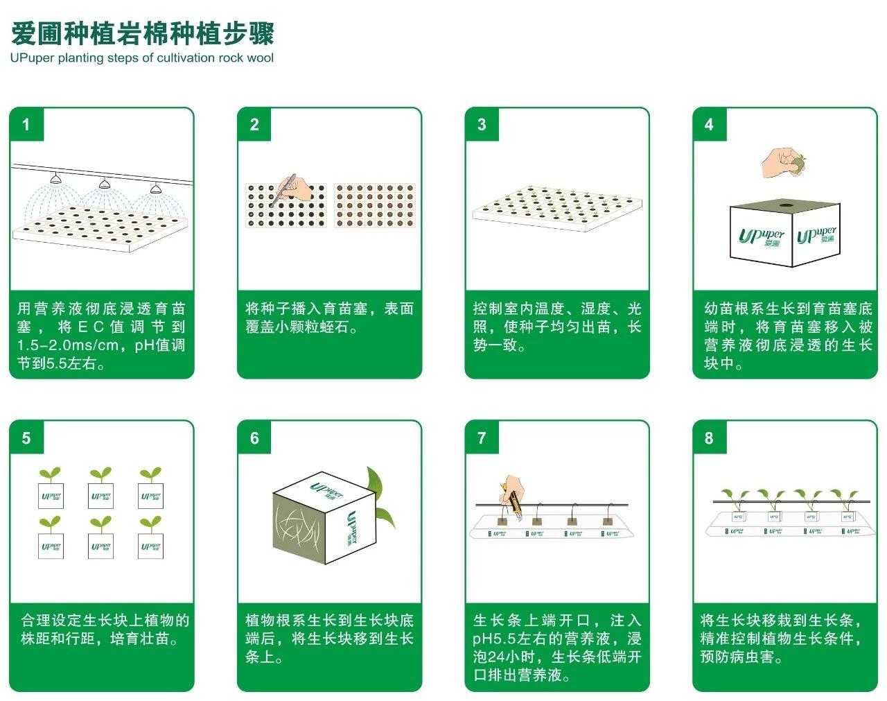 爱圃农用岩棉生长步骤图