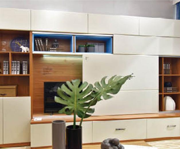 定制书柜样例