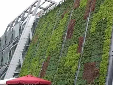立体绿化销售