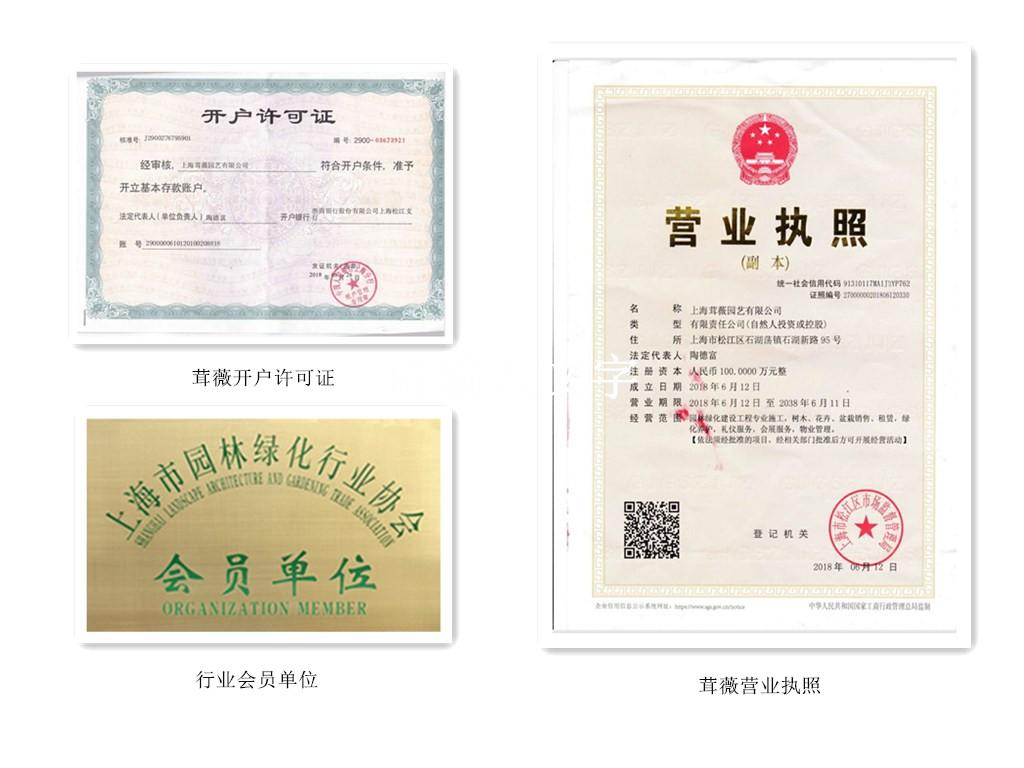 上海ag真人营业执照和许可证