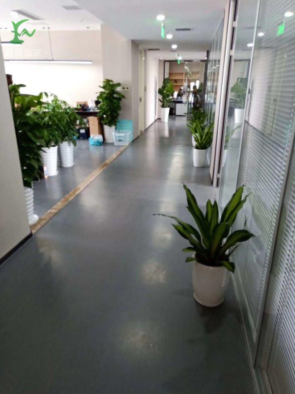 上海绿化养护要注意哪些土壤和养分-上海ag真人园艺有限公司供