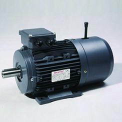 MSB系列刹车电机