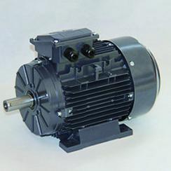 T系列铝壳三相异步电机