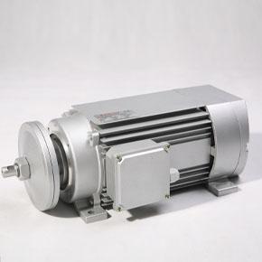 MSC系列单/三相铝壳切锯电机