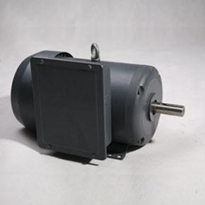 NEME SLF系列钢制单相电机