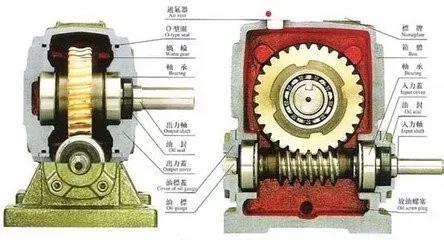 蜗轮蜗杆减速器