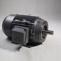 NEMA 铸铁三相异步电机