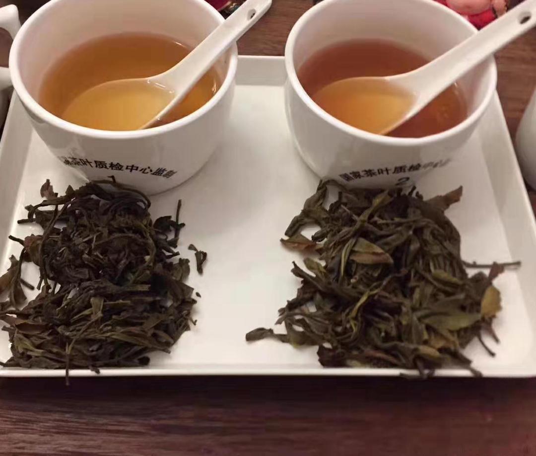 茶叶审评时的用水要求