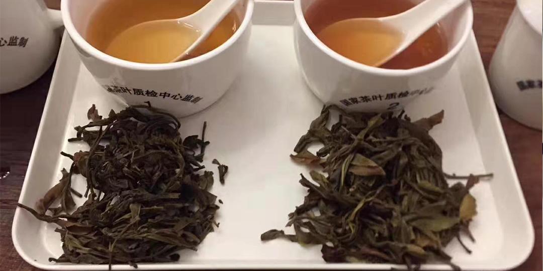 您知道什么是评茶吗?