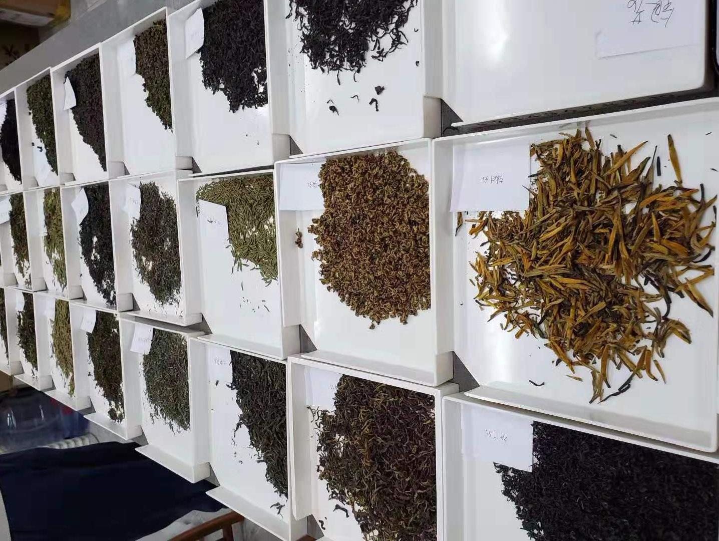 茶叶感官审评室专用评茶盘,审评茶样