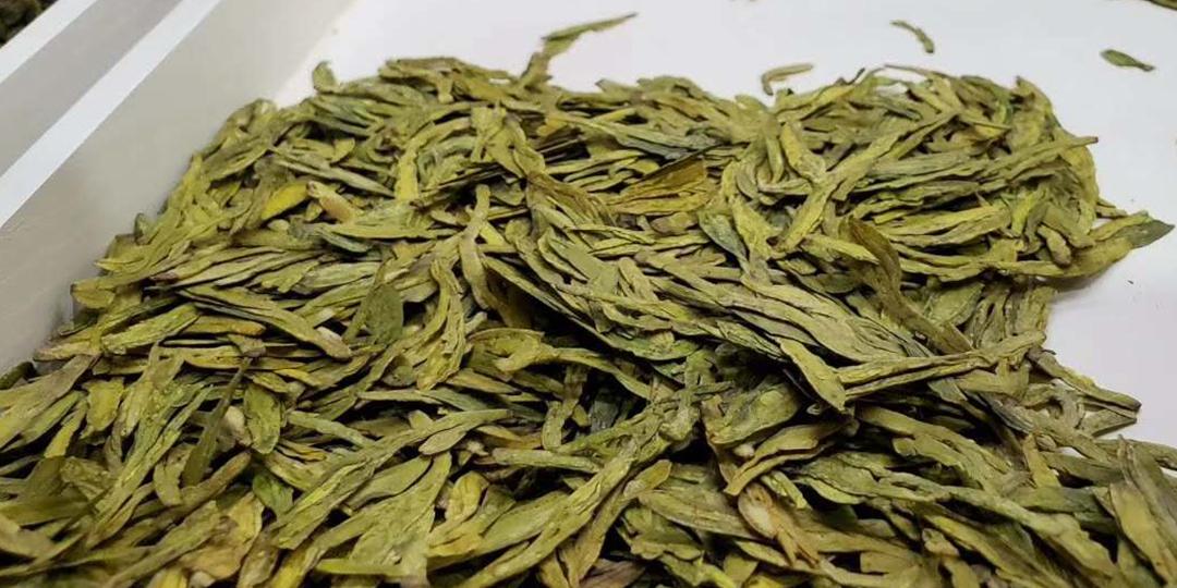 茶叶外形肥壮