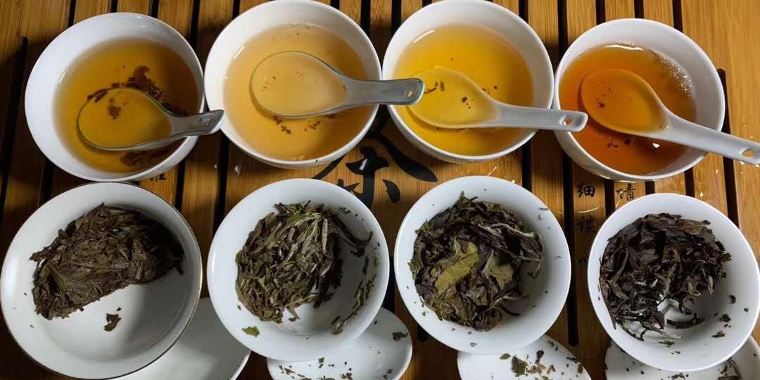 审评青茶(乌龙茶)用的为钟形带盖的瓷盏,容水量为110毫升,审评杯或盏均要求高低厚薄大小—致。  审评碗为特制的广口白色瓷碗,用来审评茶叶汤色和滋味,毛茶的审评碗容量为250毫升,成品茶审评碗容量为150毫升,要求厚薄大小、高低一致,瓷色纯白一致。审评青茶(乌龙茶)用的则为110毫升.评鉴茶汤,叶底