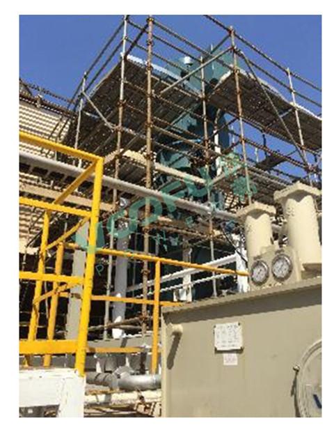 台塑集团PVC厂(循环水泵1165HP/750rpm)