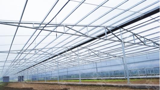 PC阳光板,PC阳光板温室--上海绿澳新材料科技有限公司