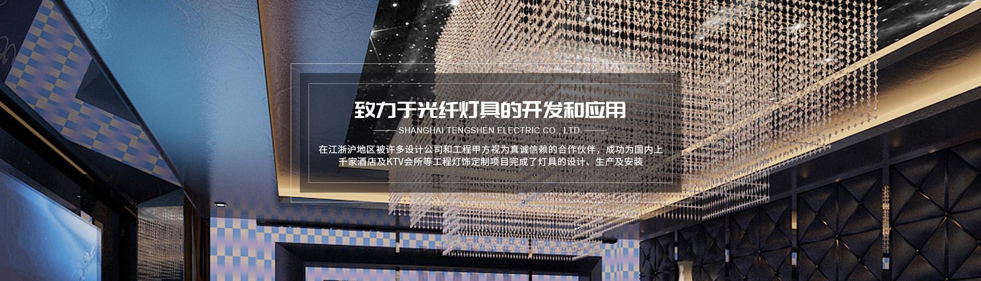 上海腾申电气有限公司