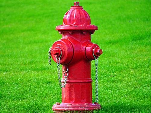 热烈祝贺上海北洋泵业制造有限公司网站成功上线!
