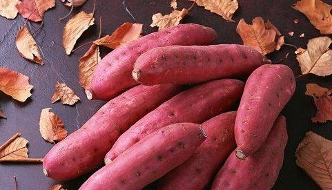 紅薯在減脂期間可以吃么