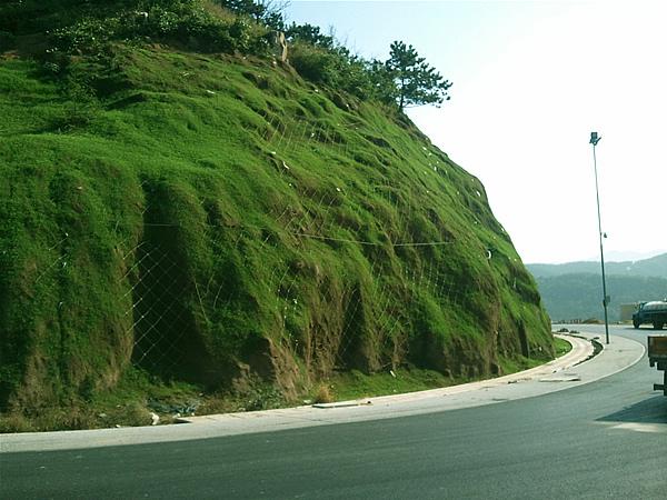 绿化混凝土护坡