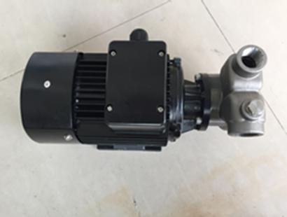 EDG系列不锈钢气动隔膜泵
