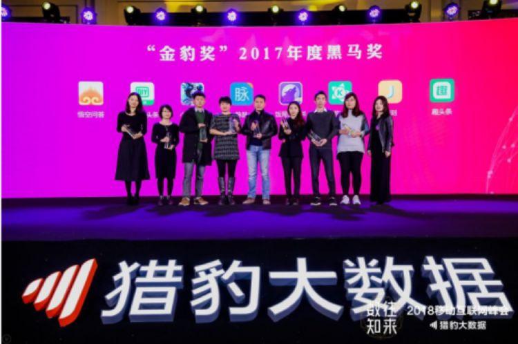 """亚遊斩获""""金豹奖""""2017年度黑马奖"""