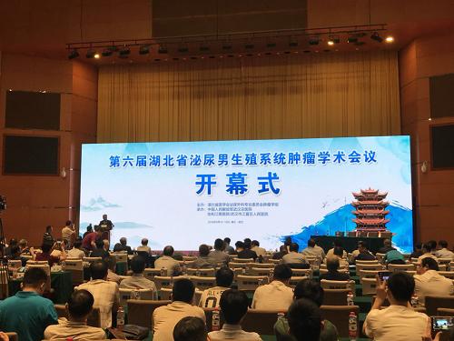 """""""第六届湖北省泌尿男生殖系统肿瘤学术会议""""在武汉成功举办。"""