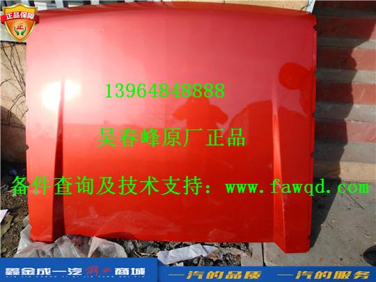 5704012-E28-A9  青岛一汽解放龙VH 导流罩