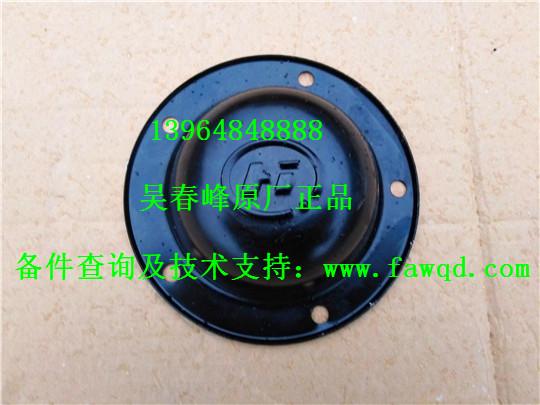 3103066-4E 青岛一汽解放天V 前轮轮毂盖