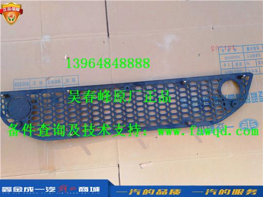 2803100-E48 青岛一汽解放悍V 保险杠下格栅