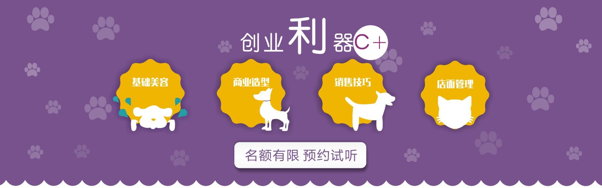 宠物美容培训课程