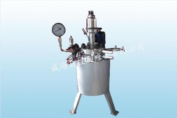 WHF-2L常规反应釜